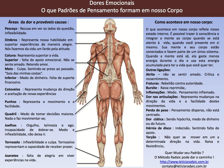 corpo11