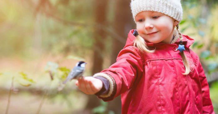 tempo-de-reflexao-atitude-e-mudanca-de-agradecer-mais-do-que-pedir