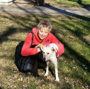 cachorro-resgatado