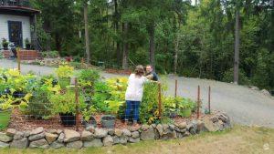 jardim-casa-contêiner