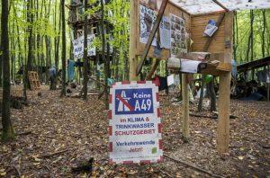 ativista-impede-que-floresta-seja-derrubada