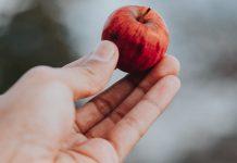 pequenos-gestos-podem-mudar-o-mundo-de-alguem