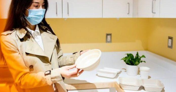 pesquisadores-criam-utensilios-biodegradaveis-que-sao-tao-baratos-quanto-o-plastico
