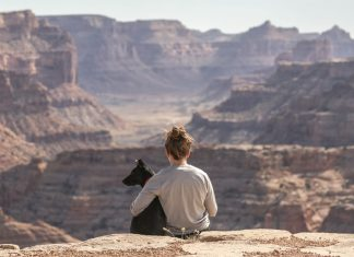 quem-reclama-da-solidao-sente-falta-e-nao-procura-merece-estar-sozinho