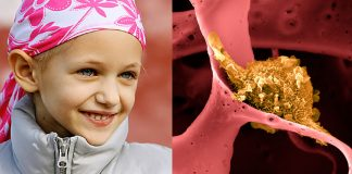 vacina-contra-cancer-criada-em-harvard-e-eficaz-em-100-dos-testes