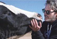 eu-nunca-interpretaria-um-toureiro-a-menos-que-no-final-o-touro-me-mate-disse-o-ator