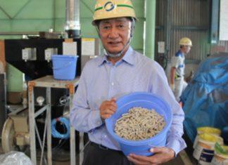 japoneses-criam-maquinas-que-transformam-fraldas-sujas-em-energia