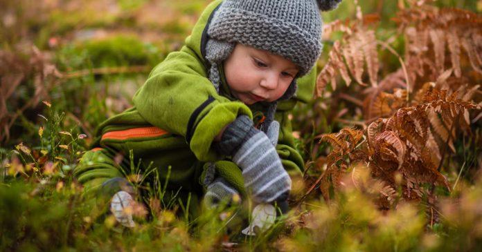 estudo-descobre-melhora-do-tdah-em-criancas-que-vivem-na-natureza