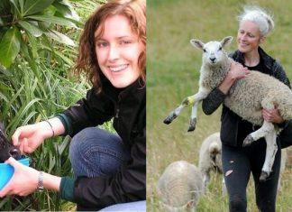 boa-acao-mulher-abre-asilo-de-animais-para-cuidar-de-pets-doentes